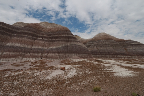 Petrified Forest NP| Blue Mesa Badlands - Iconic