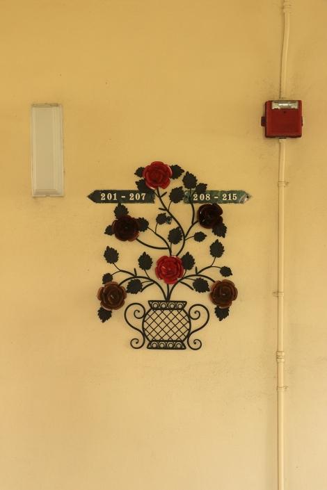 IMG_0842 -ironflowersSMALL