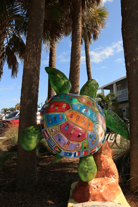 IMG_3911-TURTLESMALL