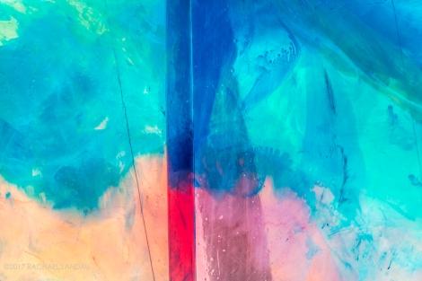 Closeup-0978-snapmammas-sig
