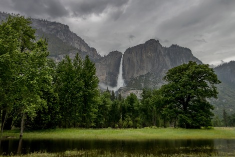 Yosemite Flooded Meadow